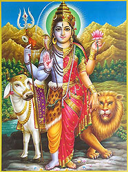 male female krishna shakti